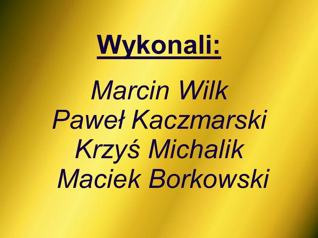 Wykonali: Marcin Wilk Paweł Kaczmarski Krzyś Michalik Maciek Borkowski