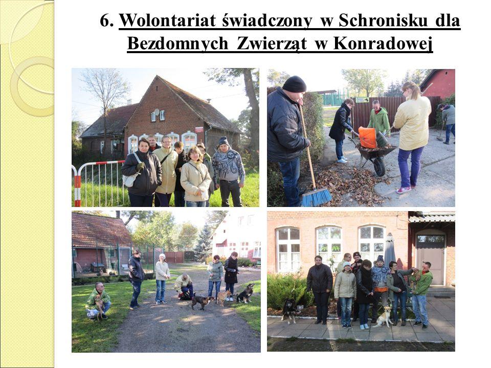 6. Wolontariat świadczony w Schronisku dla Bezdomnych Zwierząt w Konradowej