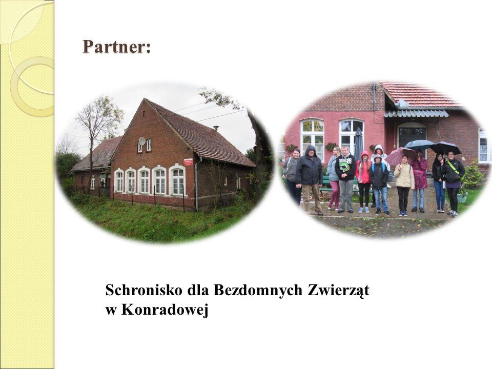 Partner: Schronisko dla Bezdomnych Zwierząt w Konradowej
