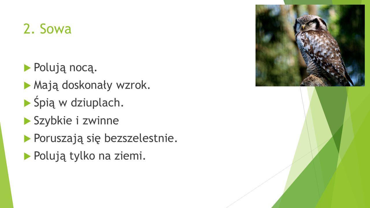 To… http://asocjacje.pl/wp-content/uploads/2013/12/wilk.jpg