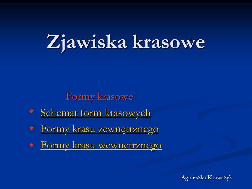 Zjawiska krasowe Formy krasowe Formy krasowe Schemat form krasowych Schemat form krasowych Formy krasu zewnętrznego Formy krasu zewnętrznego Formy krasu wewnętrznego Formy krasu wewnętrznego Agnieszka Krawczyk