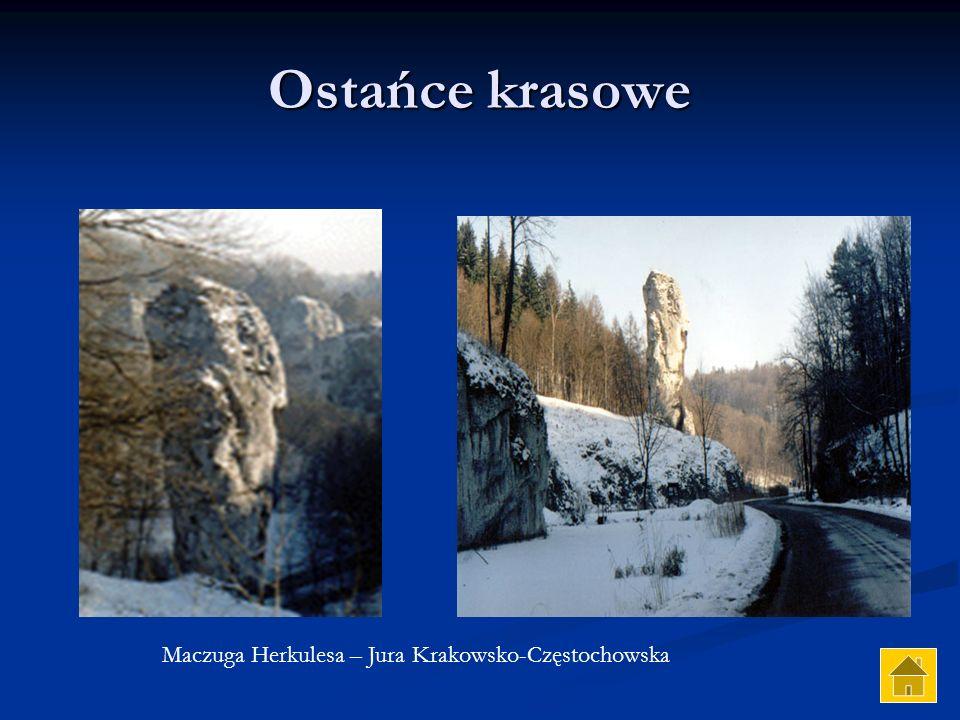Wywierzysko Niebieskie Źródła – okolice Tomaszowa Mazowieckiego, dolina Pilicy Wypływ rzeki w dolinie Girdisoara - Rumunia