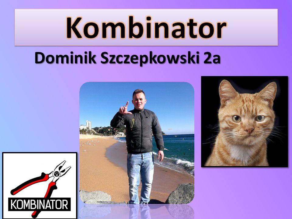 Dominik Szczepkowski 2a