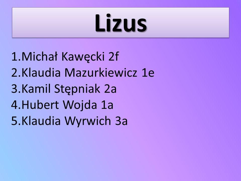 LizusLizus 1.Michał Kawęcki 2f 2.Klaudia Mazurkiewicz 1e 3.Kamil Stępniak 2a 4.Hubert Wojda 1a 5.Klaudia Wyrwich 3a