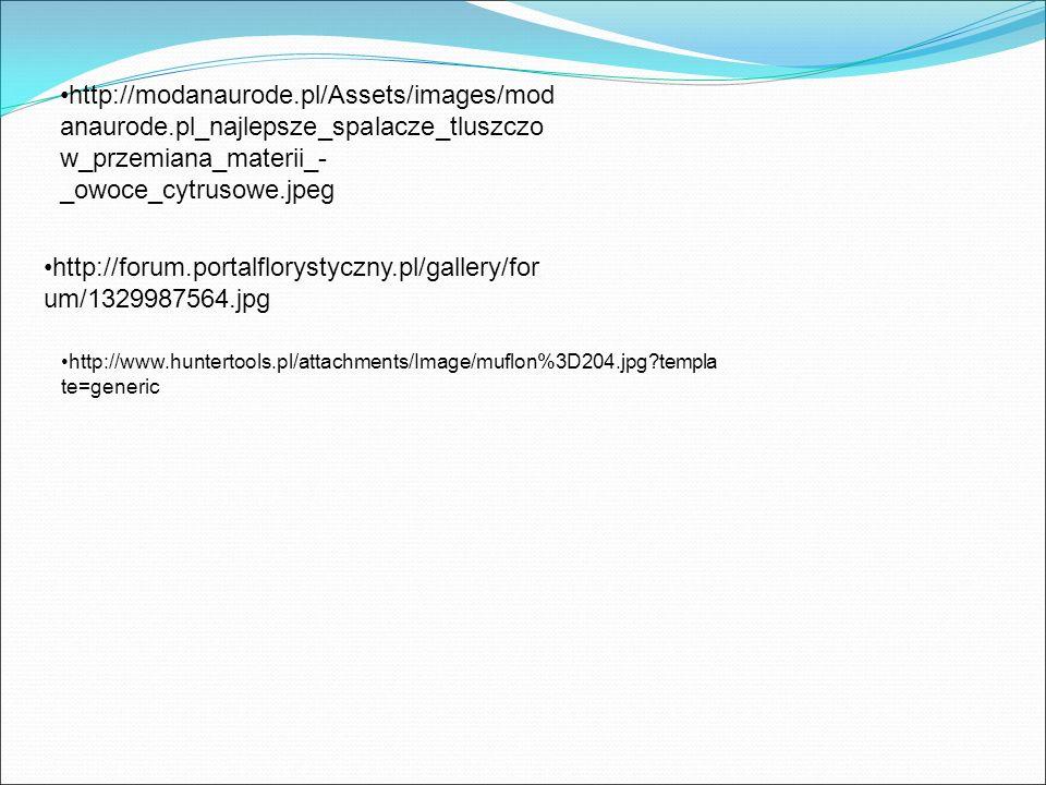 http://modanaurode.pl/Assets/images/mod anaurode.pl_najlepsze_spalacze_tluszczo w_przemiana_materii_- _owoce_cytrusowe.jpeg http://forum.portalfloryst