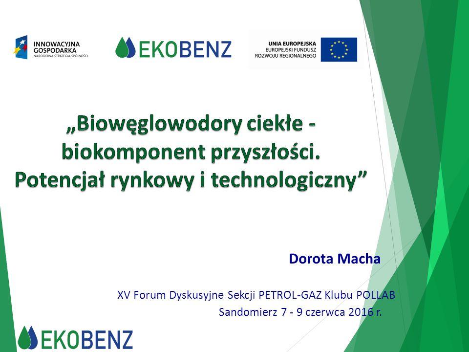 Dorota Macha XV Forum Dyskusyjne Sekcji PETROL-GAZ Klubu POLLAB Sandomierz 7 - 9 czerwca 2016 r.