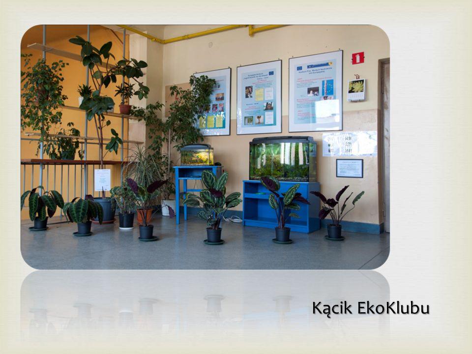 2012  Serdecznie zapraszamy Gimnazjalistów oraz ich Rodziców do wzięcia udziału w Drzwiach Otwartych XXIV Liceum Ogólnokształcącego, które odbędą się: 29 marca 2012 r.