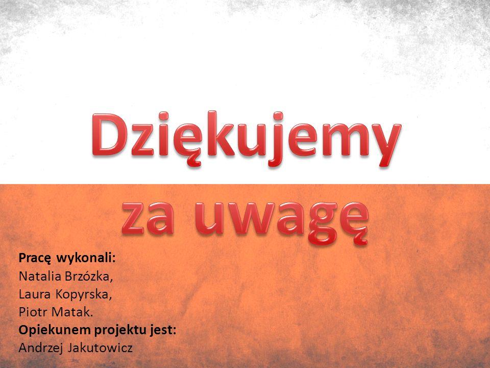 Pracę wykonali: Natalia Brzózka, Laura Kopyrska, Piotr Matak.