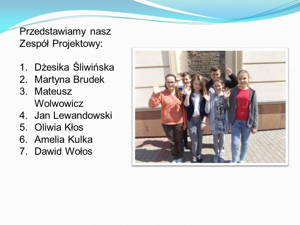 Przedstawiamy nasz Zespół Projektowy: 1.Dżesika Śliwińska 2.Martyna Brudek 3.Mateusz Wolwowicz 4.Jan Lewandowski 5.Oliwia Kłos 6.Amelia Kulka 7.Dawid Wołos