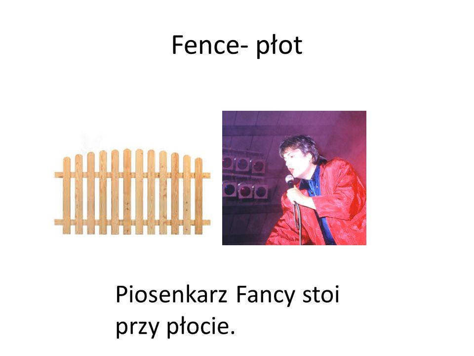 Fence- płot Piosenkarz Fancy stoi przy płocie.