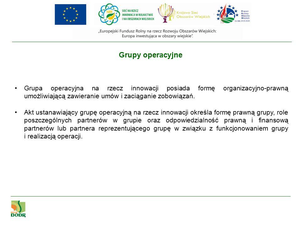 Grupy operacyjne Grupa operacyjna na rzecz innowacji posiada formę organizacyjno-prawną umożliwiającą zawieranie umów i zaciąganie zobowiązań.
