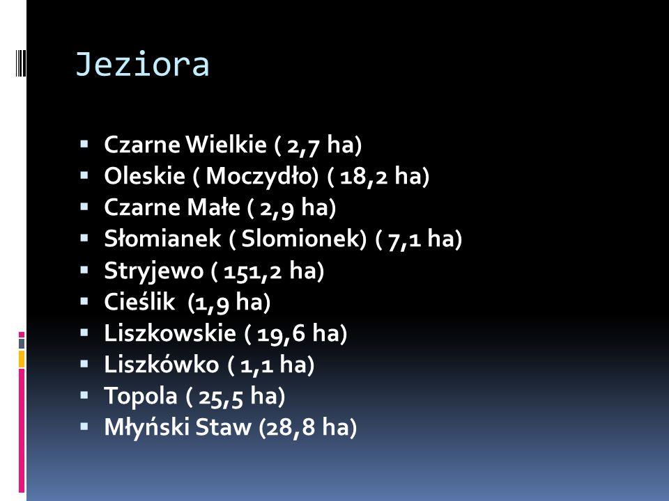 Jeziora  Czarne Wielkie ( 2,7 ha)  Oleskie ( Moczydło) ( 18,2 ha)  Czarne Małe ( 2,9 ha)  Słomianek ( Slomionek) ( 7,1 ha)  Stryjewo ( 151,2 ha)