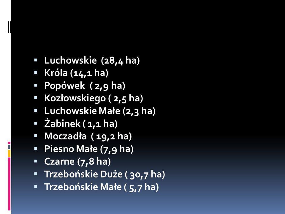  Luchowskie (28,4 ha)  Króla (14,1 ha)  Popówek ( 2,9 ha)  Kozłowskiego ( 2,5 ha)  Luchowskie Małe (2,3 ha)  Żabinek ( 1,1 ha)  Moczadła ( 19,2