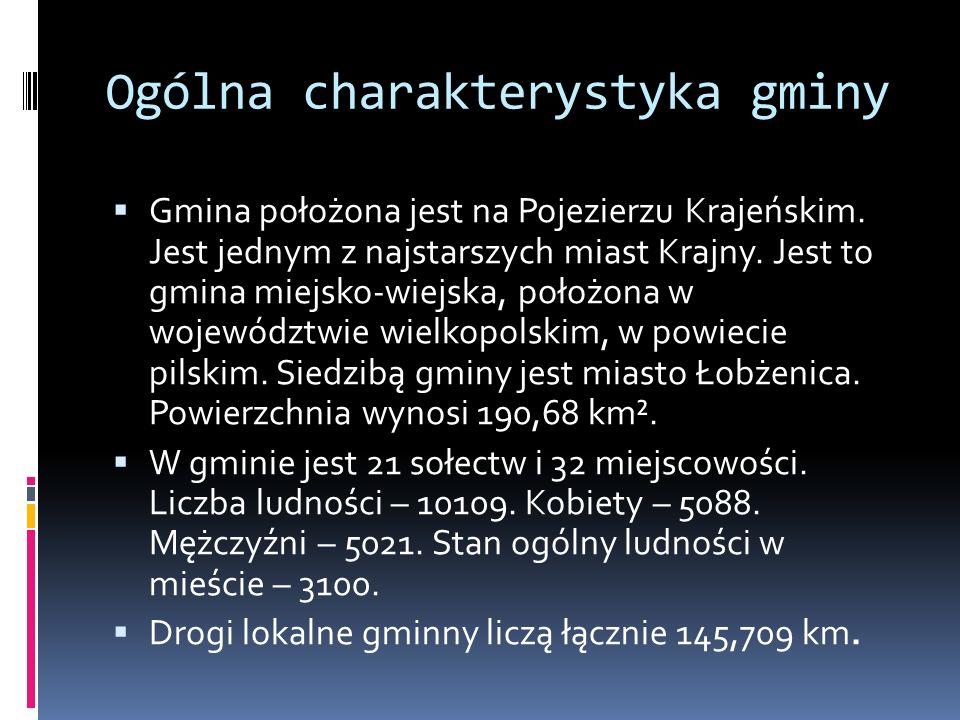 Ogólna charakterystyka gminy  Gmina położona jest na Pojezierzu Krajeńskim. Jest jednym z najstarszych miast Krajny. Jest to gmina miejsko-wiejska, p