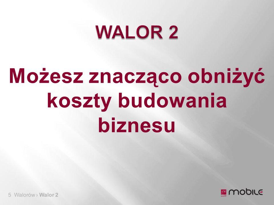 5 Walorów › Walor 2