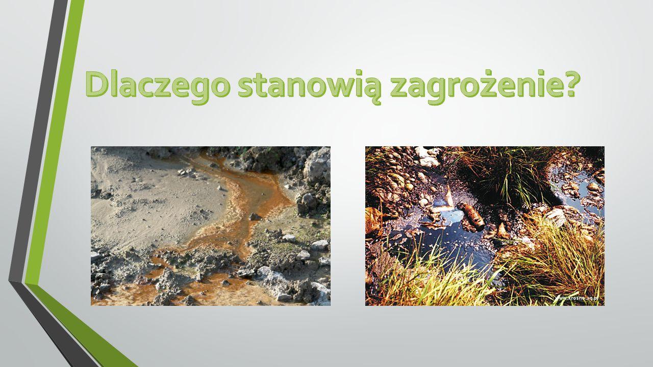 Źródło:http://www.bkt21.com/landfill-leachate-treatment/ http://waste360.com/Landfill_Management/using-microbes-treat-landfill-leachate-201005