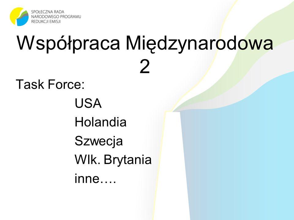Współpraca Międzynarodowa 2 Task Force: USA Holandia Szwecja Wlk. Brytania inne….