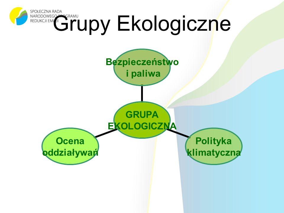 Grupy Ekologiczne GRUPA EKOLOGICZNA Bezpieczeństwo i paliwa Polityka klimatyczna Ocena oddziaływań