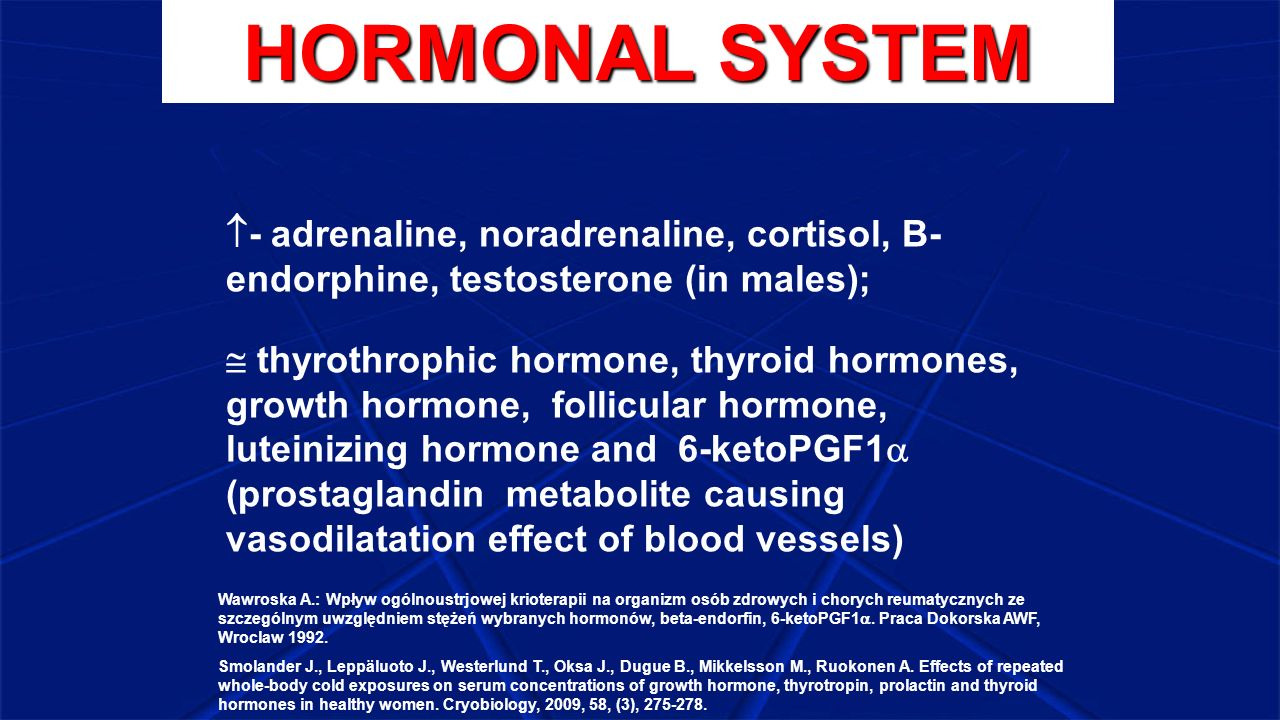 HORMONAL SYSTEM  - adrenaline, noradrenaline, cortisol, B- endorphine, testosterone (in males);  thyrothrophic hormone, thyroid hormones, growth hor