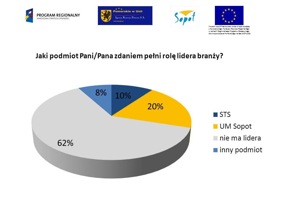 Projekt współfinansowany przez Unię Europejską z Europejskiego Funduszu Rozwoju Regionalnego w ramach Regionalnego Programu Operacyjnego dla Województwa Pomorskiego na lata 2007-2013 Jaki podmiot Pani/Pana zdaniem pełni rolę lidera branży