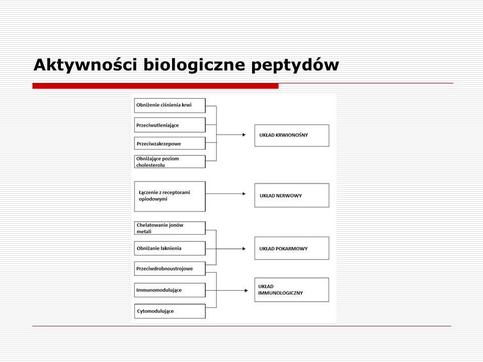 Aktywności biologiczne peptydów