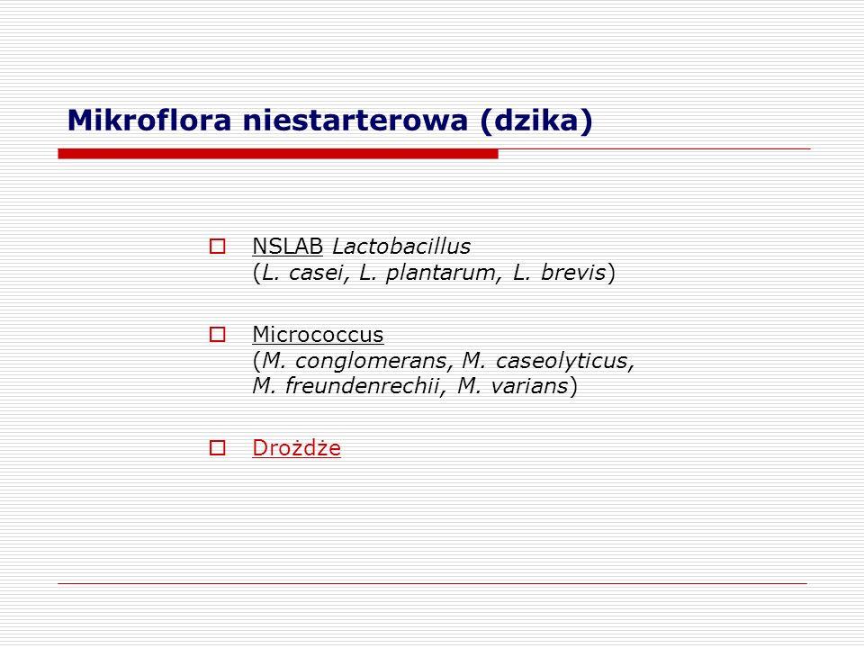 Mikroflora niestarterowa (dzika)  NSLAB Lactobacillus (L. casei, L. plantarum, L. brevis)  Micrococcus (M. conglomerans, M. caseolyticus, M. freunde