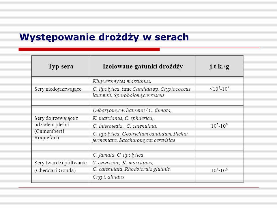 Występowanie drożdży w serach Typ seraIzolowane gatunki drożdżyj.t.k./g Sery niedojrzewające Kluyveromyces marxianus, C. lipolytica, inne Candida sp.