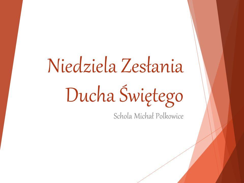 Niedziela Zesłania Ducha Świętego Schola Michał Polkowice