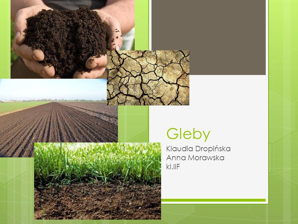 Czym jest gleba. To zewnętrzna warstwa skorupy ziemskiej (od kilkunastu cm.