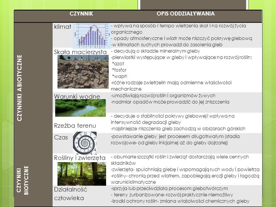 ŻYZNOŚĆ I URODZAJNOŚĆ ŻYZNOŚĆURODZAJNOŚĆ -naturalna zdolność gleby do zaspokajania życiowych potrzeb roślin: *dostarczanie składników pokarmowych, *wody, *powietrza.