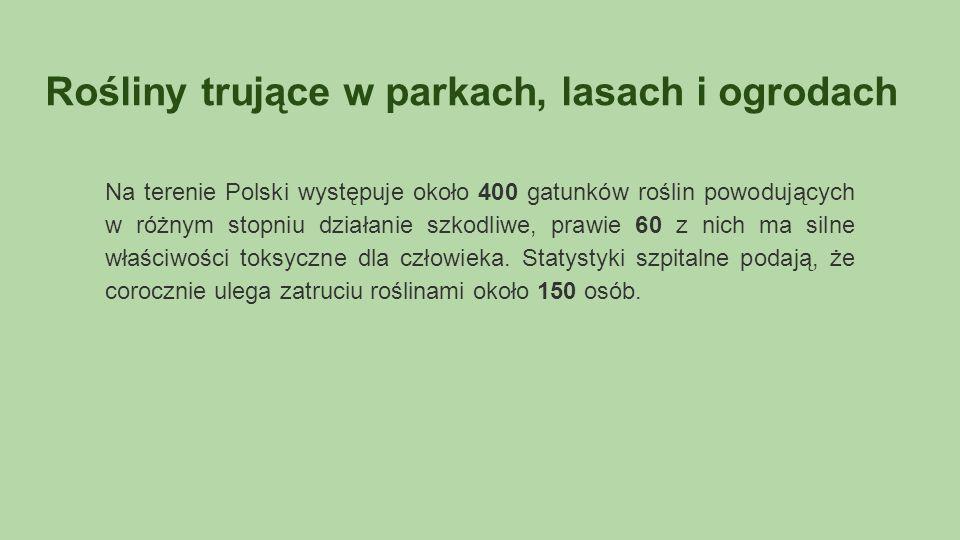 Rośliny trujące w parkach, lasach i ogrodach Na terenie Polski występuje około 400 gatunków roślin powodujących w różnym stopniu działanie szkodliwe, prawie 60 z nich ma silne właściwości toksyczne dla człowieka.