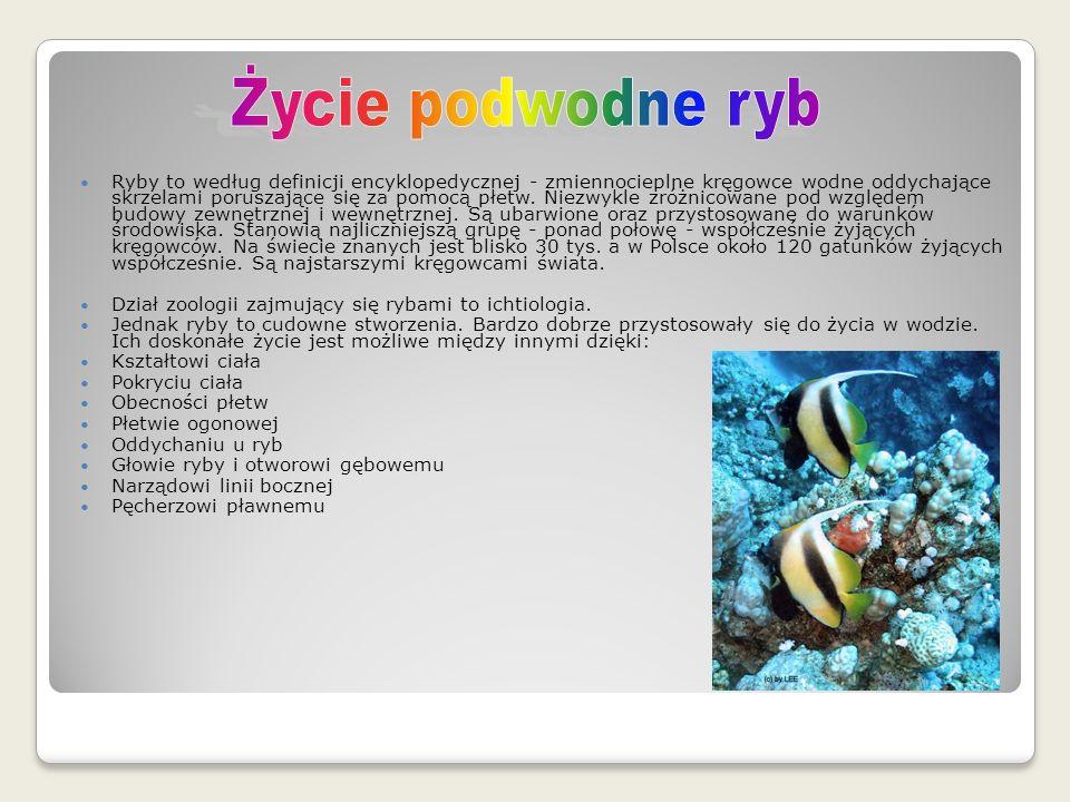 Ryby to według definicji encyklopedycznej - zmiennocieplne kręgowce wodne oddychające skrzelami poruszające się za pomocą płetw.