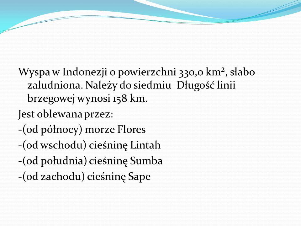 Wyspa w Indonezji o powierzchni 330,0 km², słabo zaludniona.