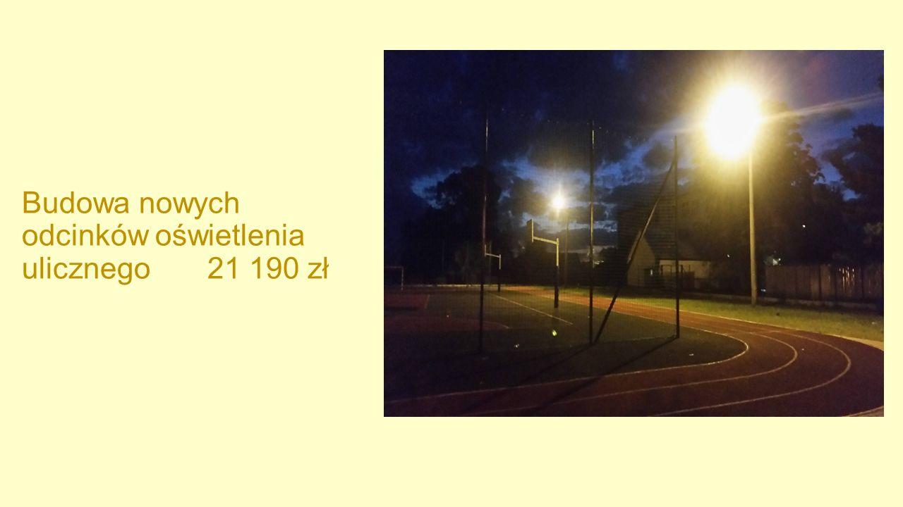 Budowa nowych odcinków oświetlenia ulicznego 21 190 zł