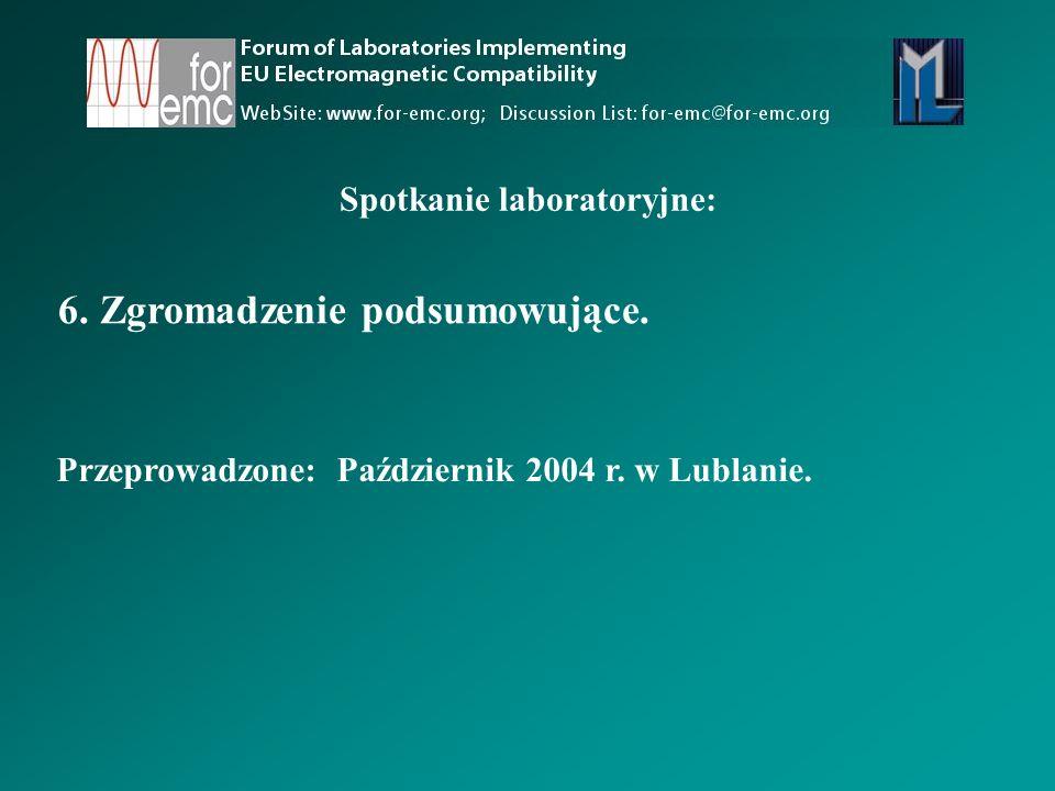 6.Zgromadzenie podsumowujące. Spotkanie laboratoryjne: Przeprowadzone: Październik 2004 r.