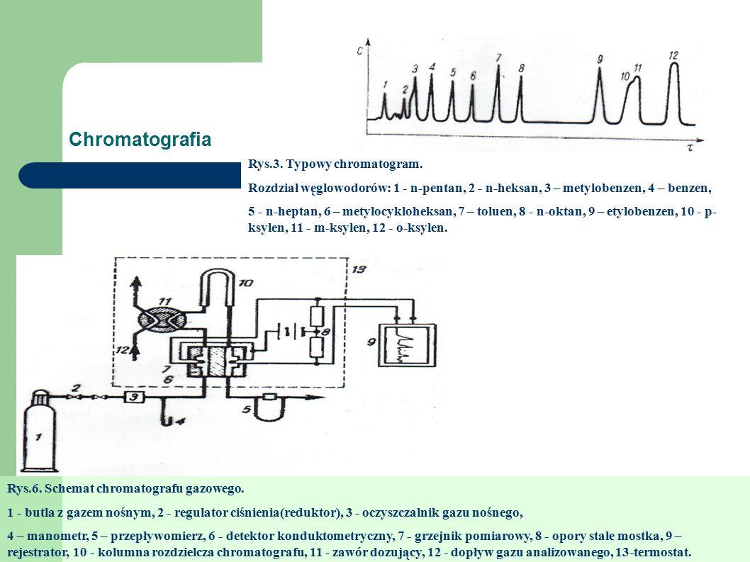 Chromatografia Rys.3. Typowy chromatogram.