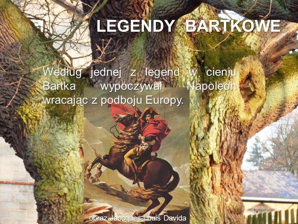 LEGENDY BARTKOWE obraz Jaccques-Louis Davida Według jednej z legend w cieniu Bartka wypoczywał Napoleon wracając z podboju Europy.