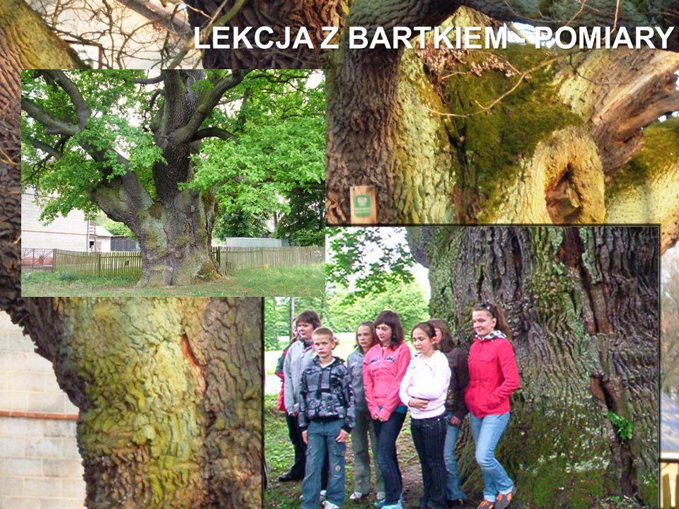 LEKCJA Z BARTKIEM - POMIARY