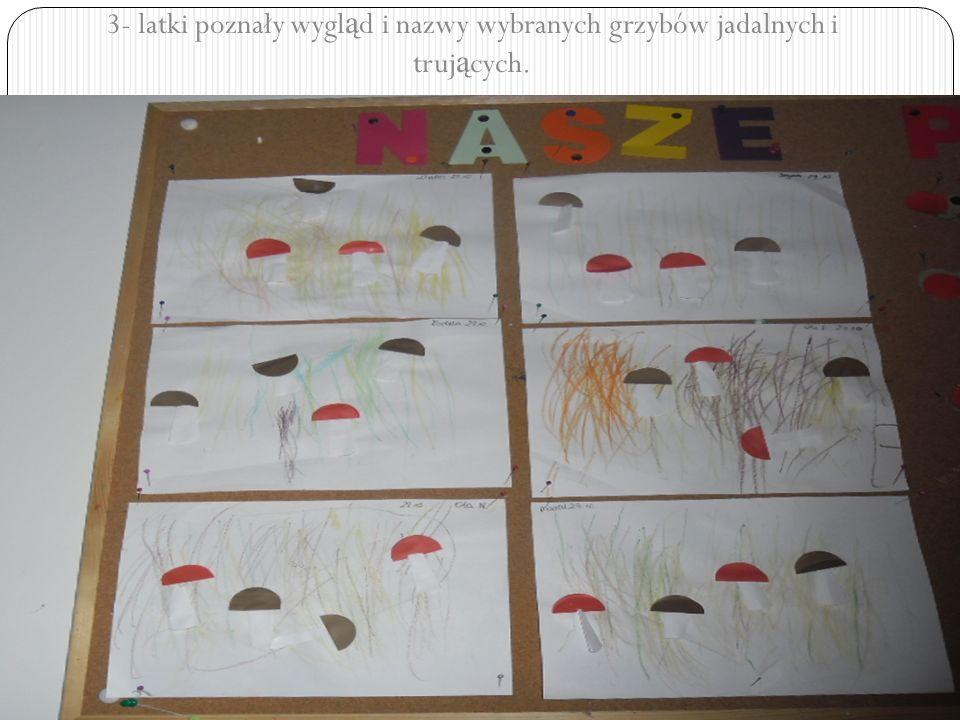 3- latki poznały wygl ą d i nazwy wybranych grzybów jadalnych i truj ą cych.