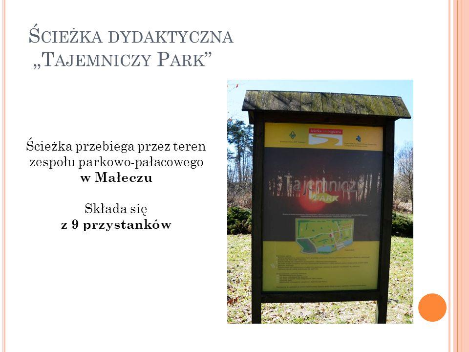 """Ś CIEŻKA DYDAKTYCZNA """"T AJEMNICZY P ARK Ścieżka przebiega przez teren zespołu parkowo-pałacowego w Małeczu Składa się z 9 przystanków"""