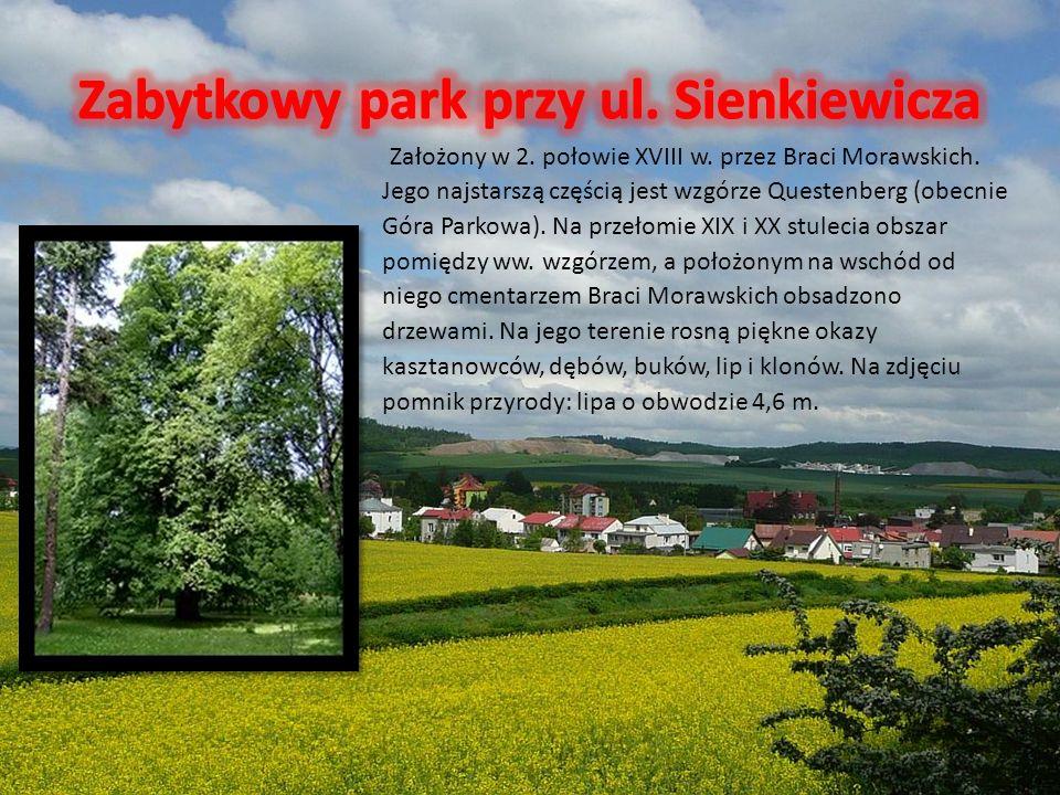 Założony w 2. połowie XVIII w. przez Braci Morawskich. Jego najstarszą częścią jest wzgórze Questenberg (obecnie Góra Parkowa). Na przełomie XIX i XX
