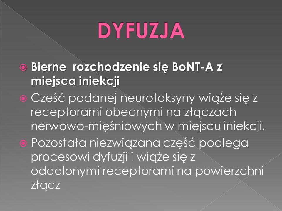  Bierne rozchodzenie się BoNT-A z miejsca iniekcji  Cześć podanej neurotoksyny wiąże się z receptorami obecnymi na złączach nerwowo-mięśniowych w miejscu iniekcji,  Pozostała niezwiązana część podlega procesowi dyfuzji i wiąże się z oddalonymi receptorami na powierzchni złącz