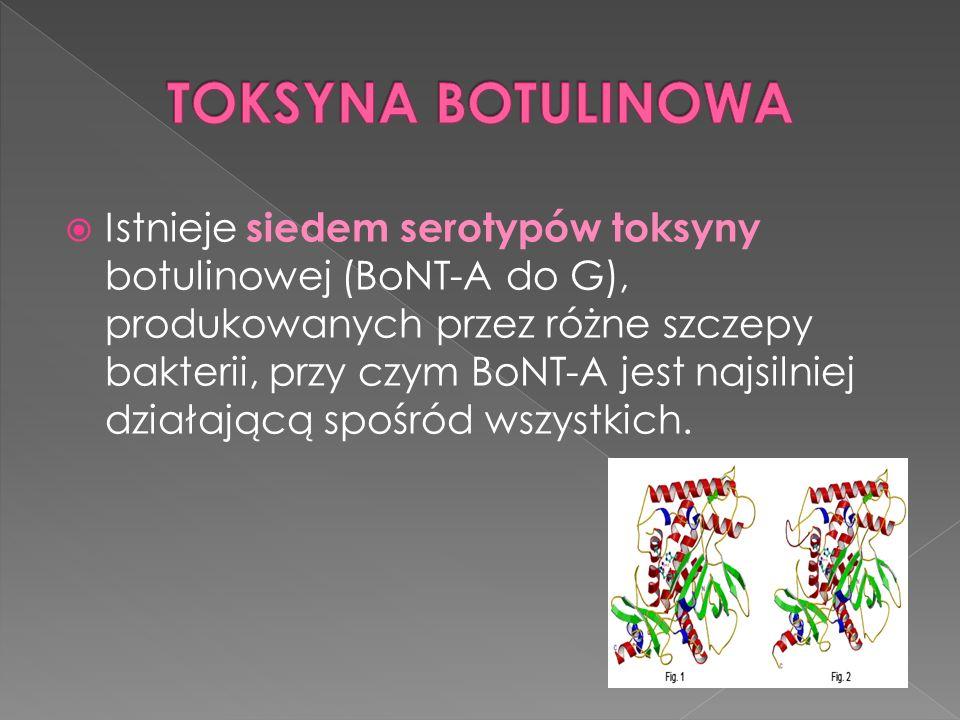  Istnieje siedem serotypów toksyny botulinowej (BoNT-A do G), produkowanych przez różne szczepy bakterii, przy czym BoNT-A jest najsilniej działającą spośród wszystkich.