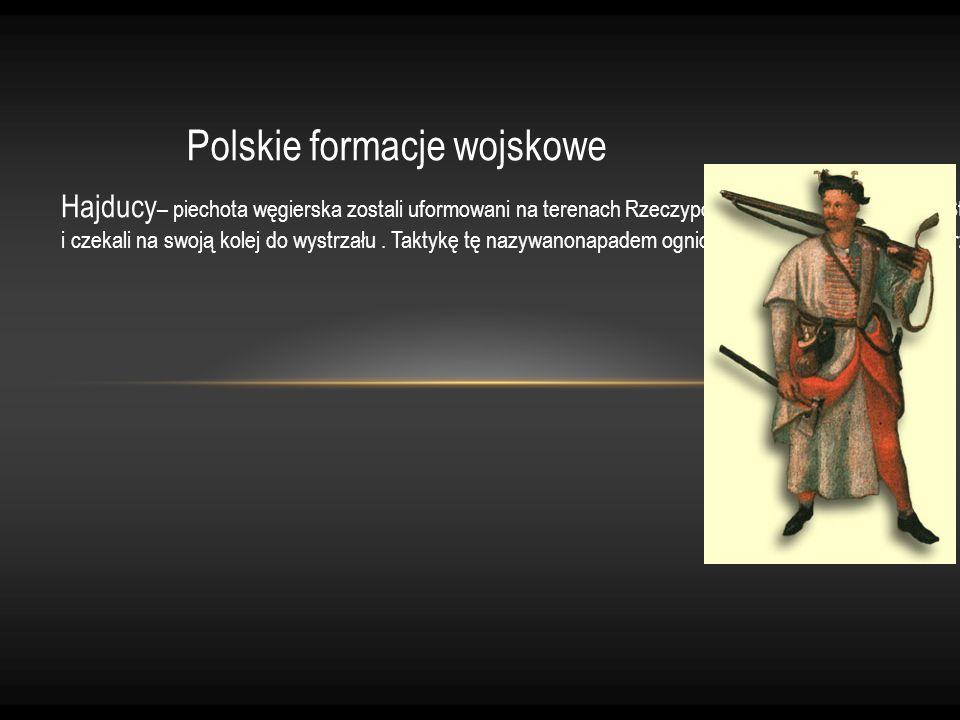 Polskie formacje wojskowe Hajducy – piechota węgierska zostali uformowani na terenach Rzeczypospolitej w XVI wieku przez StefanaBatorego. Najczęściej