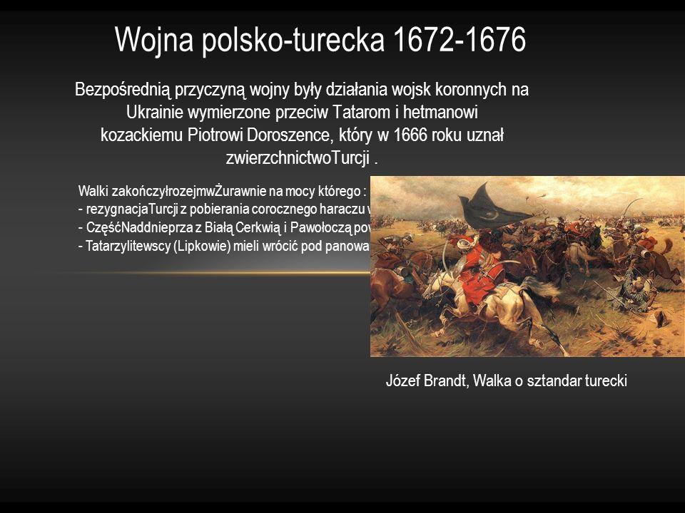 Bezpośrednią przyczyną wojny były działania wojsk koronnych na Ukrainie wymierzone przeciw Tatarom i hetmanowi kozackiemu Piotrowi Doroszence, który w