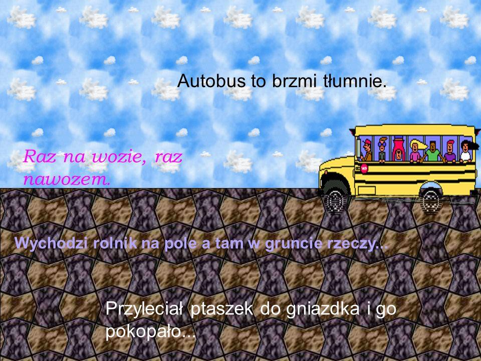 Autobus to brzmi tłumnie. Raz na wozie, raz nawozem.