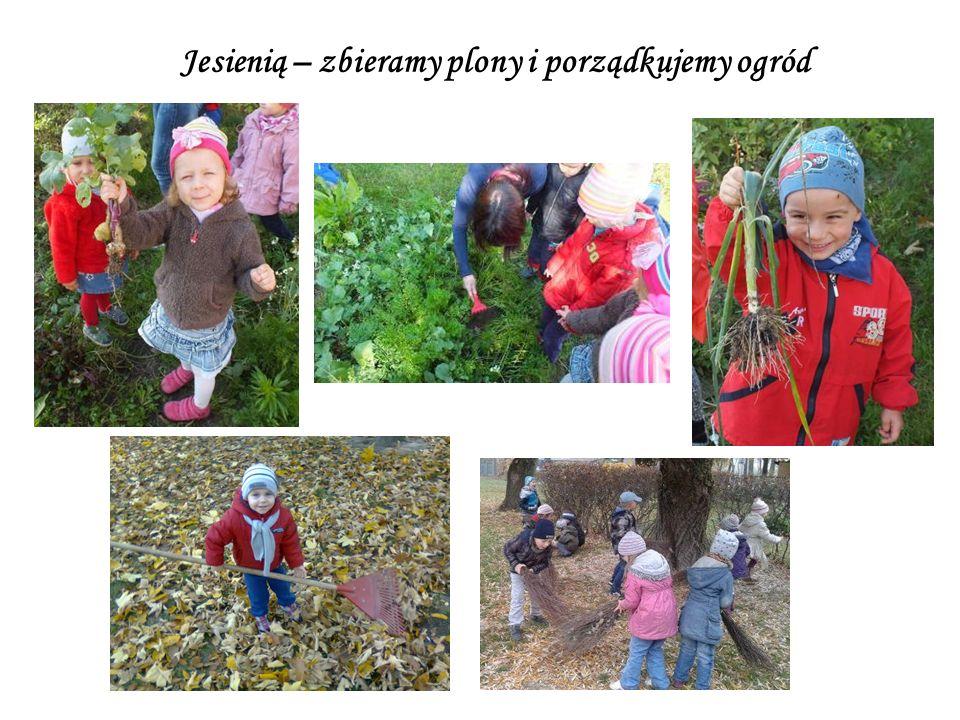 Jesienią – zbieramy plony i porządkujemy ogród