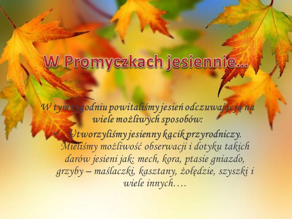 W tym tygodniu powitaliśmy jesień odczuwając ją na wiele możliwych sposobów: Utworzyliśmy jesienny kącik przyrodniczy.