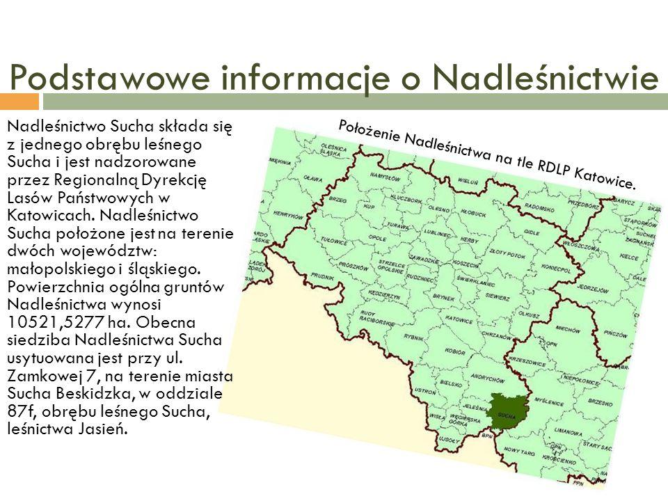 Podstawowe informacje o Nadleśnictwie Położenie Nadleśnictwa na tle RDLP Katowice. Nadleśnictwo Sucha składa się z jednego obrębu leśnego Sucha i jest