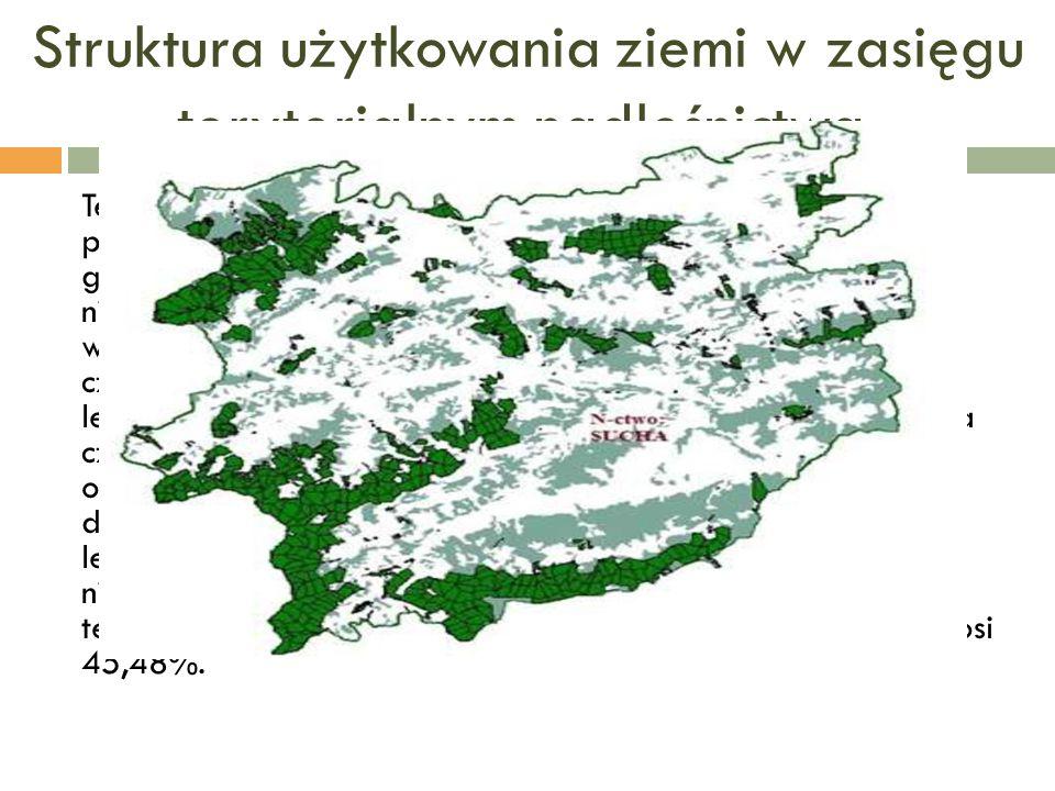 Struktura użytkowania ziemi w zasięgu terytorialnym nadleśnictwa. Teren zarządzany przez Nadleśnictwo Sucha w 96,80% powierzchni zajmują grunty leśne